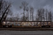 Railraod car with graffiti on track in front of winter trees and dark sky