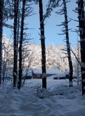 snowandsunrays-1