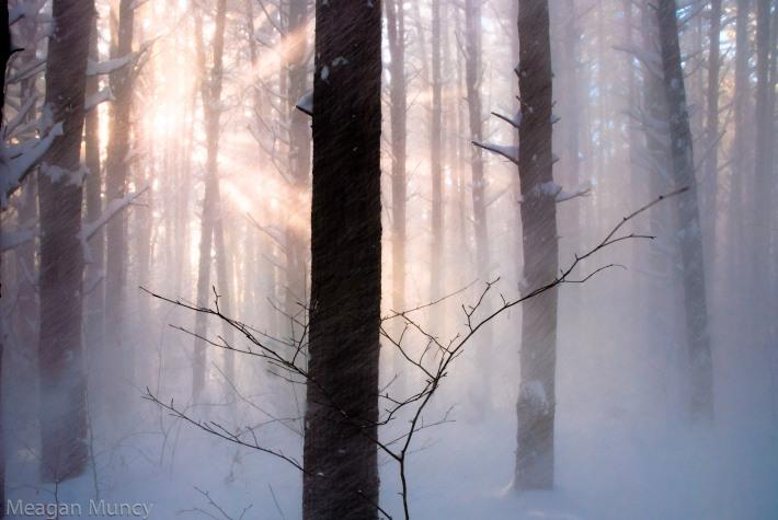 snowandsunrays-6
