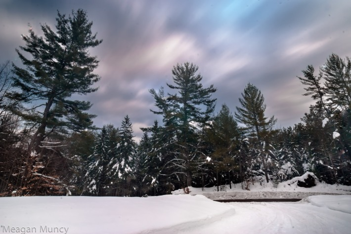 Adirondack forest and driveway with blurred clouds